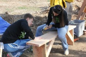 building bench