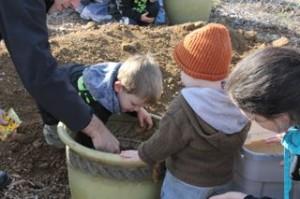 seed bomb making