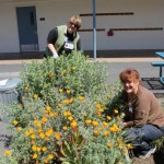 Beautiful-Day-Pomeroy-Elementary-Santa-Clara-CA-volunteers-2012