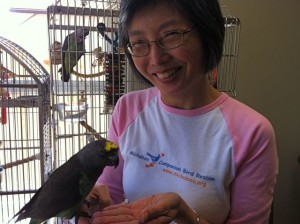Mickaboo-Companion-Bird-Rescue-Pamela-Lee