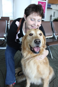 airport-therapy-dogs-mineta-san-jose-international-airport-truthatlas.com