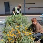 Beautiful-Day-Pomeroy-Elementary-Santa-Clara-CA-volunteers-2012